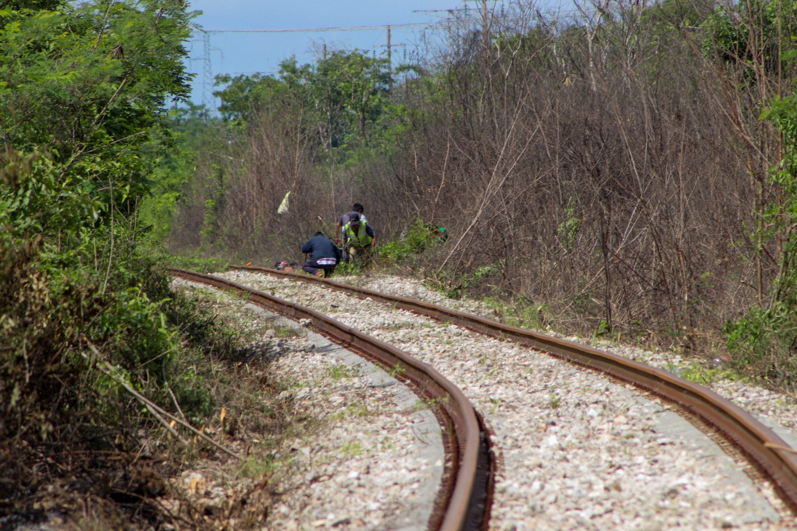SUSPENSIÓN DEFINITIVA de obras del Tren Maya: Tramo Uno.
