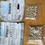 Misteriosas semillas llegan desde China a hogares de EE.UU.