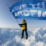 Salvemos el Ártico: campaña lanzada por GreenPeace.