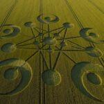 Círculos de cultivos: ¿mito, trabajo humano o fenómeno natural?