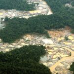 Peligrosa contaminación por mercurio, extermina la vida de flora y fauna en El Amazonas.
