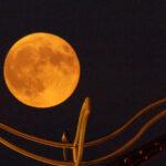 """Última oportunidad para apreciar la """"Luna de Maíz""""."""