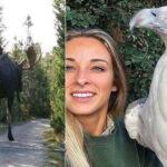 20 animales gigantes que no parecen que fueran reales