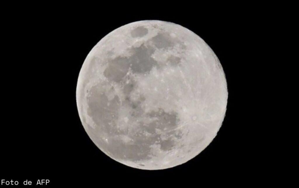 luna gusano