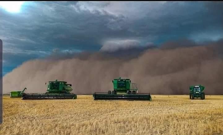 tormenta de polvo