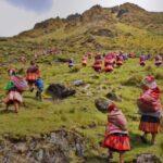 Pueblos originarios reforestan para recuperar ecosistemas y bosques.