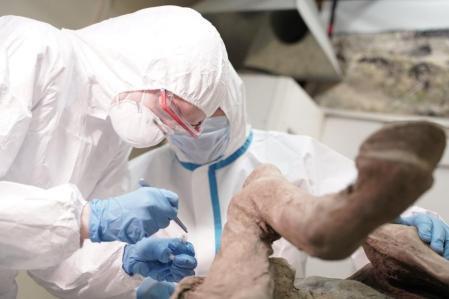 virus prehistóricos